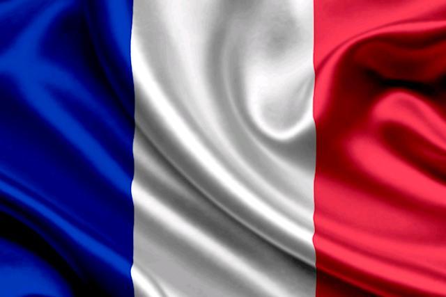France Flag, 36